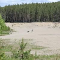 Lördagen ägnades åt spår i skogen runt ett sandtag. Micke spårade i sandtaget med en hund.