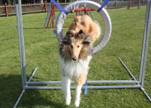 Eiko hoppar däcket